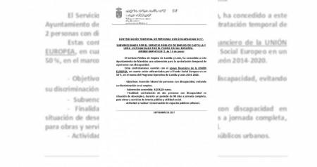 Contratacion personas con discapacidad 2017